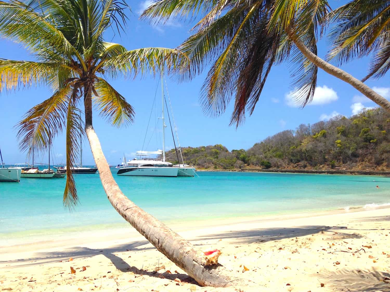 Catamaran Charter Programs