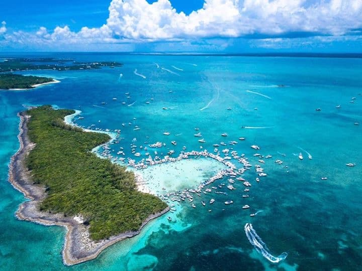Cheeseburger party held during the regattat time in the abacos